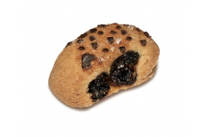 Raisin Biscuit